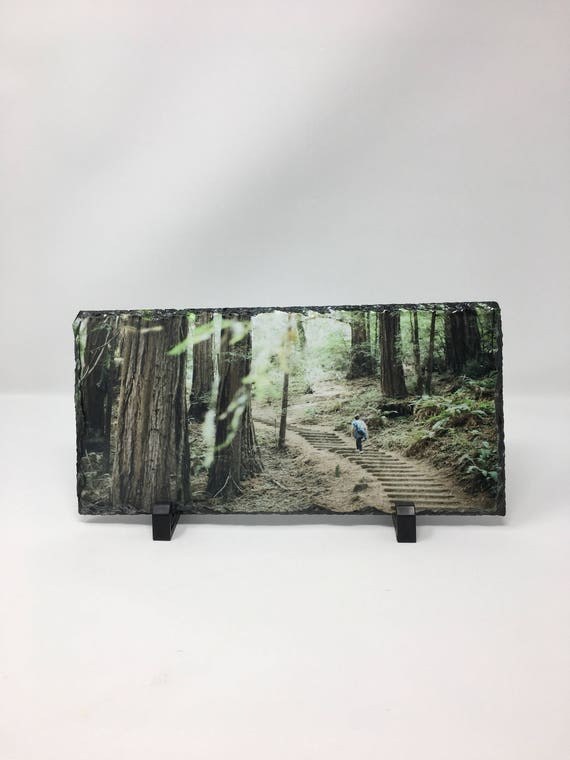 California Photo, Muir Woods, Redwoods, Photo Slate, California Landscape, Custom Slate, Slate photography, Slate art, Stairway to Heaven