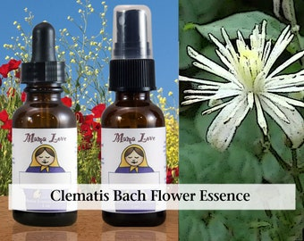 Clematis Bach Flower Essence, 1 oz Dropper or Spray for Coming Down to Earth when Overly Dreamy, Disconnected from Physical World
