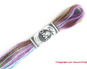 DMC 4523 Coloris Variegated 6 Strand Floss Vent du Nord (North Wind)