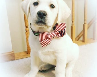Dog Bow Tie Red & White Stripes || Monogram Puppy Bowtie || Custom Pet Gift by Three Spoiled Dogs