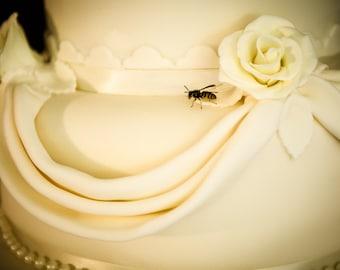 Cake Wasp