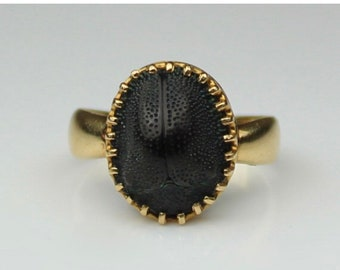 Layaway For Cat Payment 3 Of 4 Scarab Ring****