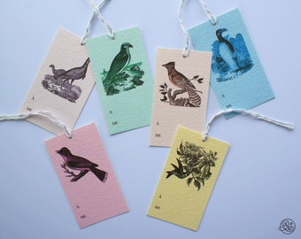 6 Gift Tags with strings - Little Birds // Label, Card, Birthday, Gift Accessory, Host Gift, Wine Label, Jam Label, Pastel, Vintage