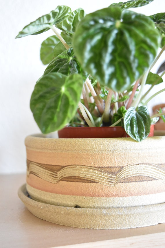 shallow etched clay flower pot with water drainage hole / planter