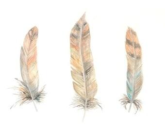 Feather art print painting artwork bird feathers three