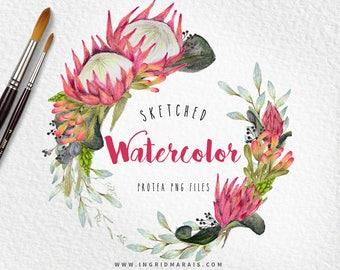 Watercolor Protea Wreath