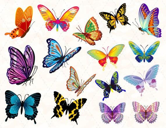 articles similaires papillon digital clip art papillon color rose clipart papillon papillon. Black Bedroom Furniture Sets. Home Design Ideas