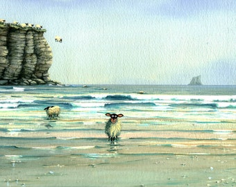 Tombstoning  cliff diving sheep signed print from a watercolour by Mark Denman