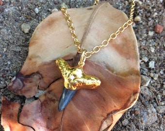 Shark Tooth ~Necklace