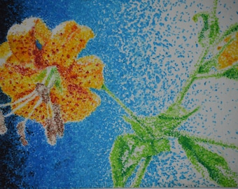 Ombre Lily Original Pastel Drawing