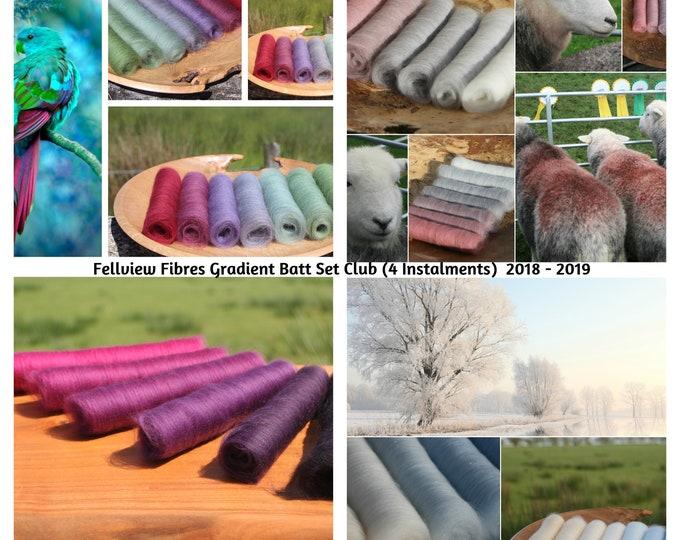 Fellview Fibres Gradient Club - Four Instalments - 100g and 150g
