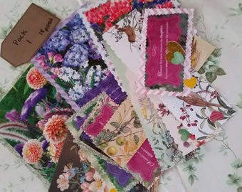 Friendship and flowers scrapbook package (18 pieces )