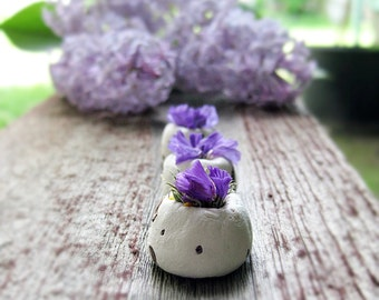 Botanical Seed Bombs ™  10 wildflower Purple Seed Bombs Gift Plantable Gift Boxed, Gift For Her, Garden Gift, Gardening