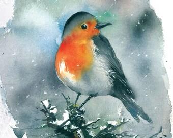 Robin bird at winter watercolor painting art print