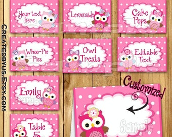 Owl food tent cards Owl Baby Girl Name cards Place cards Table decorations Owl birthday Table decor Owl Baby Shower food labels 12 PRECUT