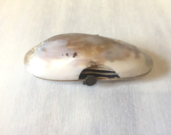 Vintage shell purse, coin purse, vintage purse, shell coin purse, shell pill box, vintage coin purse, sea shell purse, vintage shell bag