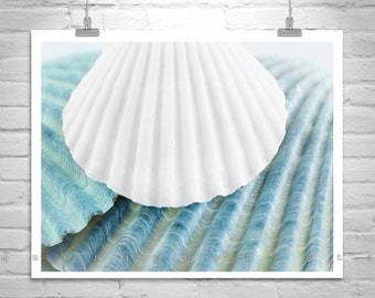 Seashell Decor, Teal Bathroom Decor, Bathroom Wall Art, Picture for Bath, Blue Seashell Decor, Sea Shell Photograph, Shell Art, Shell Print