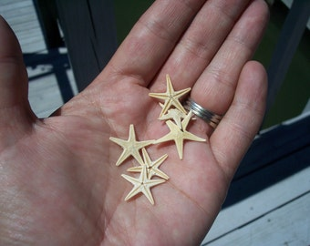 Mini Small Natural Tan Flat Starfish/ Lockets DIY Frame Accents Table Scatter Confetti Tiny Bottle Arts Crafts Supplies Coastal Home Decor