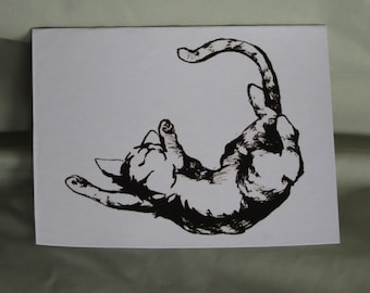 Cat blank note cards