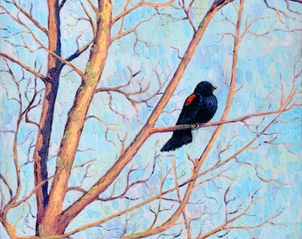Red-Winged Blackbird, 10 x 10 in., giclee print