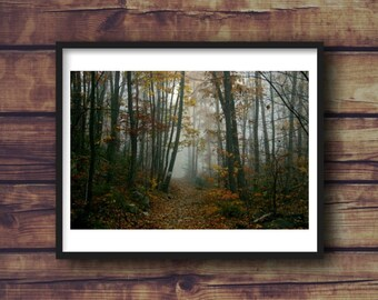 Autumn Hiking Path Fine Art Photograph