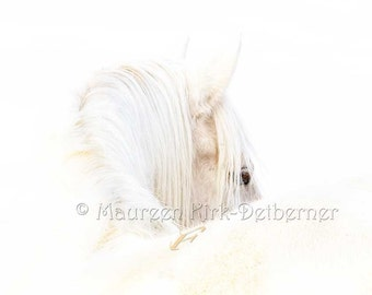 Horse art large canvas print white horse wall art 24 x 36 palomino horse living room horse eye horse giclee 16 x 24