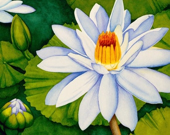 Watercolor painting...PARADISE...water lily...giclee