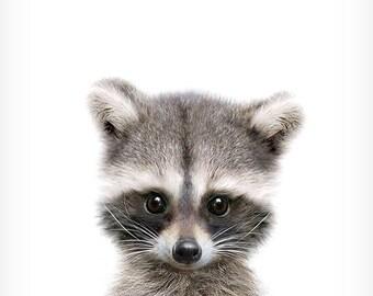 Raccoon print, Woodland animals, Nursery decor, Animal art, Baby animals, Nursery wall art, Kids art, Woodland prints, Nursery art