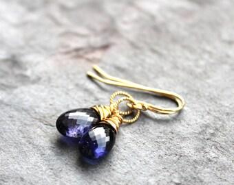 Gold Iolite Earrings Classic Delicate Drop Blue Gemstone Earrings 14k GF Gold Fill