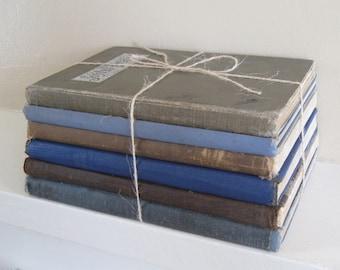 Brown and Blue Decorative Book Set, Book Bundle, Wedding Centerpiece, Beige Decor, Farmhouse Books, Shabby Book Collection, Brown Decor