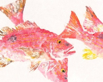 """Lane Snapper - """"In the Pink"""" - Gyotaku Fish Rubbing - Limited Edition Print (36.5 x 15.25)"""