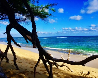 "Digital photo Hawaii landscape ""Diamondhead beach""----Apa Gallery Artwork"