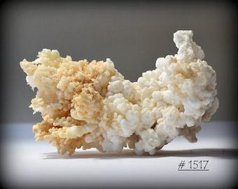 ARAGONITE - Good-Sized, Delicately-Branching Aragonite Mineral Specimen - Flos Ferri Habit - Missouri