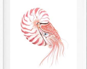 Nautilus, wall art print, watercolour, watercolor, coastal decor, beach decor, beach house decor, beach art, coastal art, beach house art