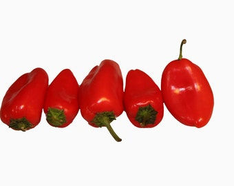 Photo Print - Five Red Peppers