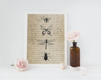Insect Print, Vintage Art, Wall Decor, Insect Art, Insect Illustration, Cabin Decor, Minimal Wall Art, Insect Wall Art, Shabby Chic Decor.