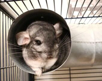 Chirping Chins Metal Corner Tube / Tunnel / Pipe - Chinchilla / Rat / Degu Cage Accessory