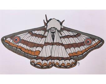 Fuzzy Grey Moth Print