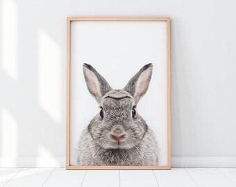 Bunny Print, Nursery Art, Rabbit Print, Bunny Wall Art, Forest Animal, Woodlands, Nursery Decor, Nursery Wall Art, Instant Download Poster