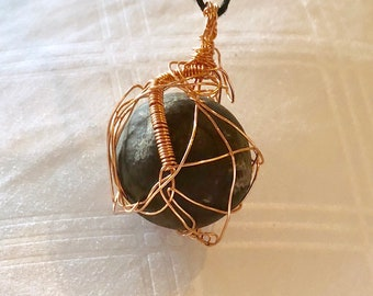 Organic Seed Pod and Copper Wire Wrapped Pendant
