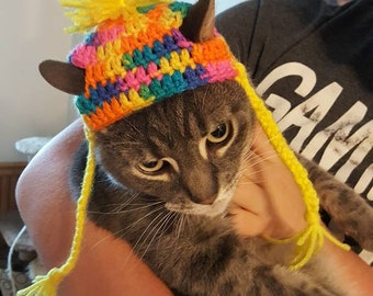 A hat for a cat!