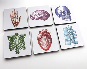 Doctor Nurse gift drink coasters medical school anatomy graduation party anatomical heart science goth hospital staff physician assistant