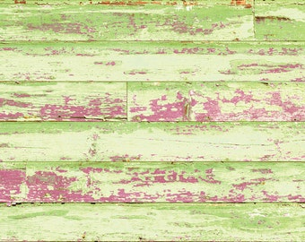 Barnboard Pink & Green Rug Flooring Background or Floor Drop Photo Prop
