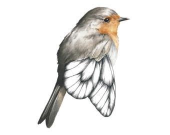 Red robin - Watercolor illustration/Art print