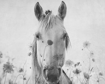 Fine Art Photograph, Double Exposure Photo, Black and White, Horse Photo, Flowers, Abstract Art, Nature, Equine, Equestrian, Square Print