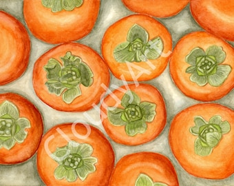 Persimmons Watercolor - Giclee Print