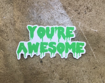 You're Awesome - vinyl sticker
