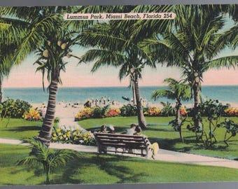 Lummus Park Miami Beach Florida Vintage Postcard 060