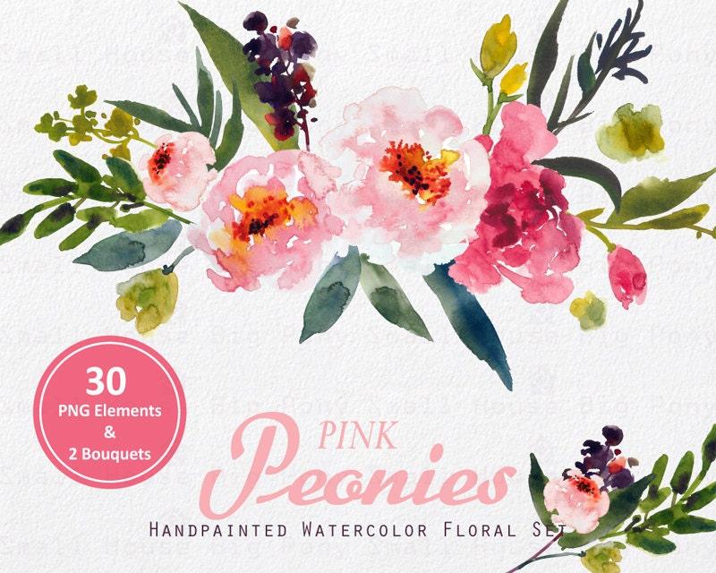 Digital Clipart- Watercolor Flower Clipart, peonies Clip art, Floral ...