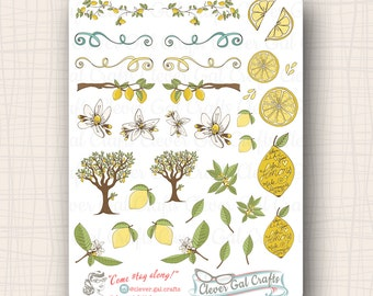 Lemon Grove Planner Stickers | 35 Stickers Total | #SD05